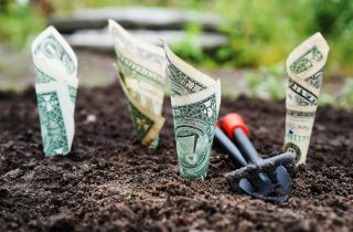 How To Save Money Gardening