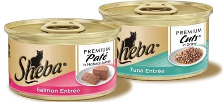 Coupons For Special Kitty Cat Food